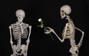 skeletal-601213